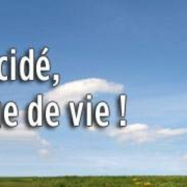 A vendre des parcelles de terrains viabilisés à Saint Gilles les hauts par Ofim