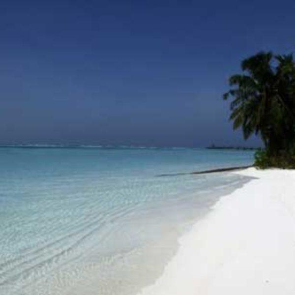 Le tourisme et l'immobilier aux Iles Vanille mis en relief lors de l'ITM 2017