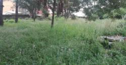 Terrain prêt à bâtir, Mahazo Ambatomaro