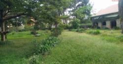 Charmante villa, Mahazo